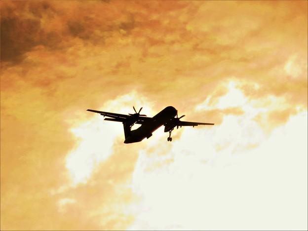 写真: 南の島で見た風景 飛行機