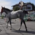 写真: 笠松 交通ルールを守る