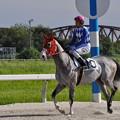 Photos: 返し馬2