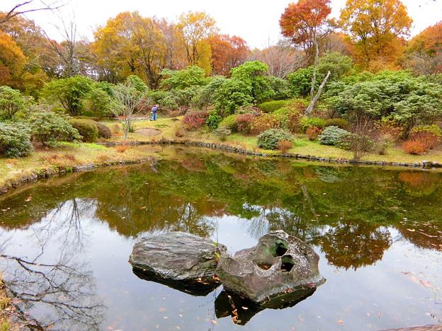 赤城自然園(4)