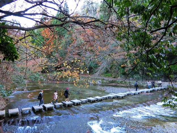養老温泉周辺散策(6)