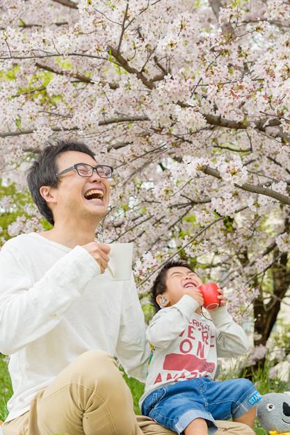 春だ!お花見だ!