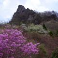 写真: 山の彩り