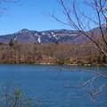 写真: ビワ池