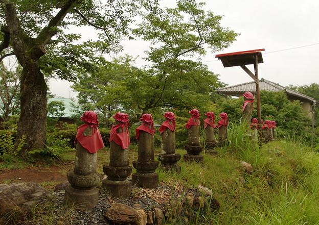 写真: 十三賢者の石仏群