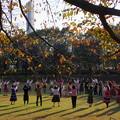 写真: 秋の陽射しの中で~