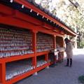 写真: 白狐神社