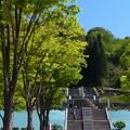 花フェスタ記念公園 (3)