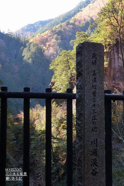 川浦渓谷 (23)