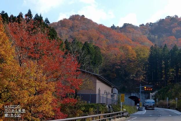 八風街道 (42)石樽トンネル東近江側