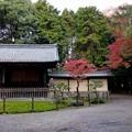 写真: 妙興寺 (3)勅使門