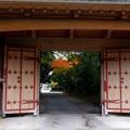 写真: 妙興寺 (5)総門裏