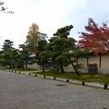 写真: 妙興寺 (50)