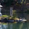 写真: 木曽川水園 (8)
