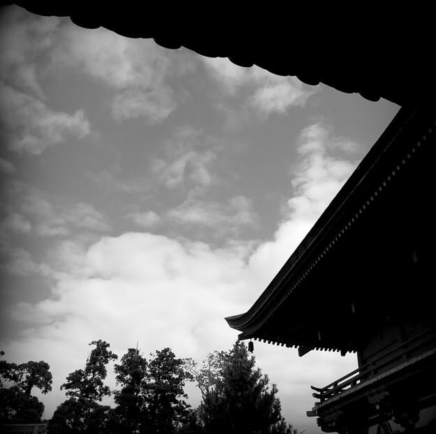 Photos: お礼参り