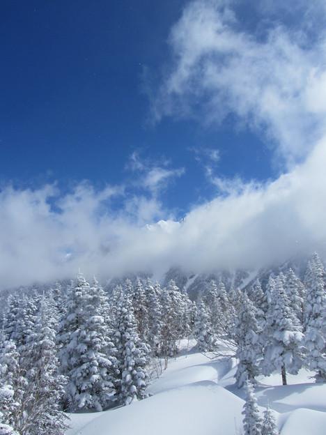 Photos: 美しい冬