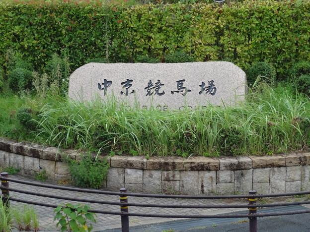 JRA中京2