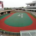 JRA中京3