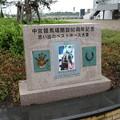 写真: JRA中京6