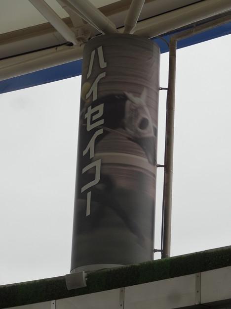JRA中京7