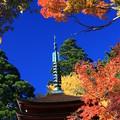 写真: 十三重の塔