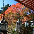 写真: 吊り灯籠