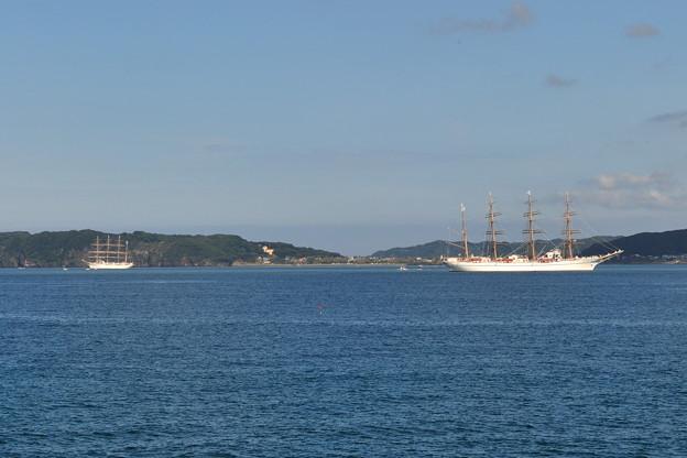 写真: 帆船-2