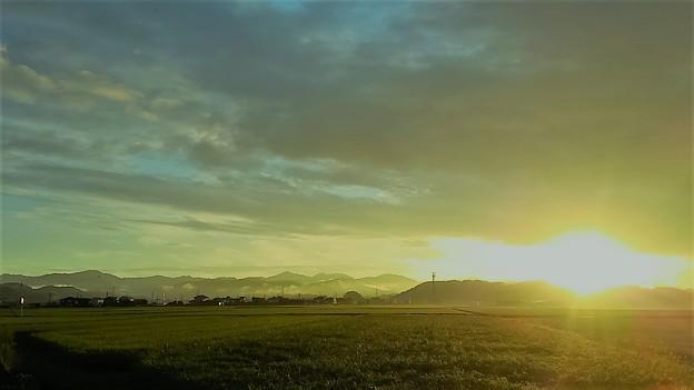 写真: 朝の田園風景