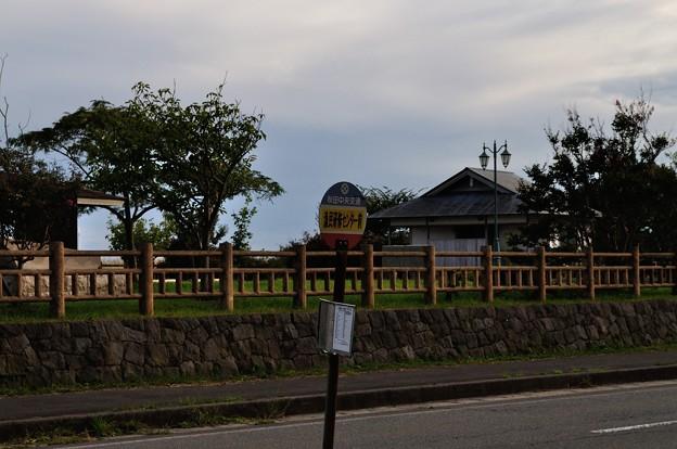 男鹿・椿漁港・グリーンタフ 16-09-19 16-32