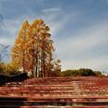 Photos: 岩手県立博物館 02