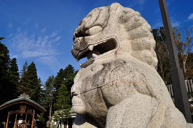 写真: 盛岡八幡宮 02