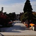 写真: 盛岡八幡宮 04