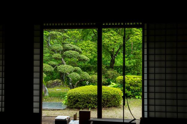 日本の夏-01560