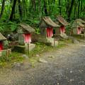 Photos: 日本の夏-01565