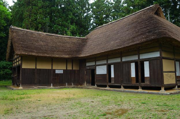 日本の夏-01584
