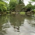 Photos: 日本の夏-01593