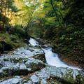 写真: いわき夏井川渓谷-17