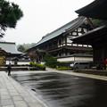 鎌倉 (16)
