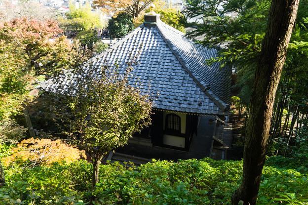 写真: 鎌倉2-34