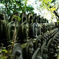 写真: 鎌倉2-41