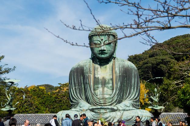 鎌倉2-62