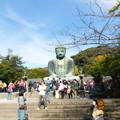 鎌倉2-61