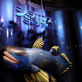 深海魚水族館18