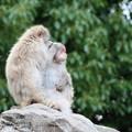 上野動物園69