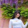 写真: 紫と