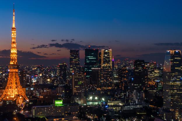 東京タワー5