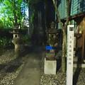 写真: 夜の多治見国長邸跡 - 4