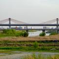 写真: 名岐バイパス「新名西橋」 - 1