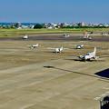 県営名古屋空港:沢山並ぶ小型飛行機