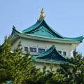 写真: 名城公園から見上げた名古屋城天守閣 - 7:金シャチ